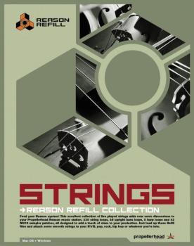 Reason - Strings Refill (PO-00631680)